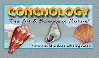 worldwideconchology.com