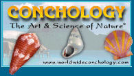 Conchology - The Art & Science of Nature